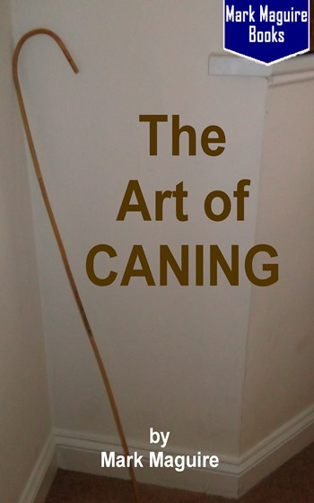 theartofcaning web